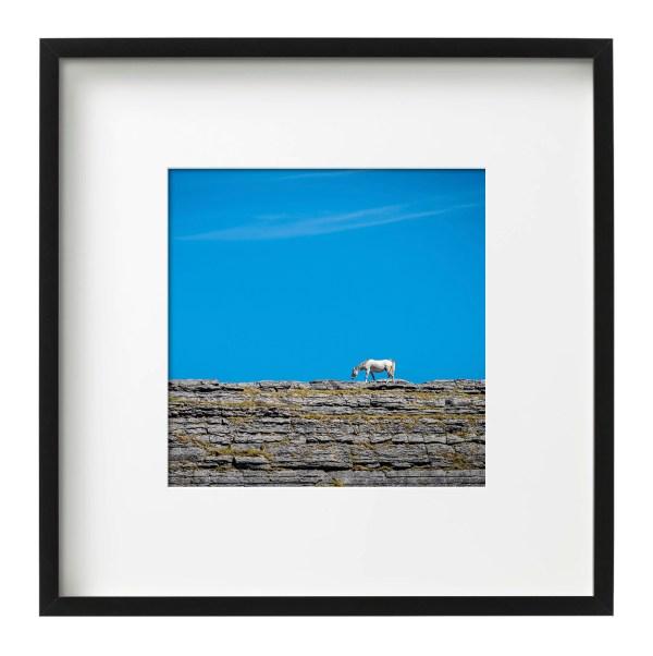 Horse on a Rock - The Burren