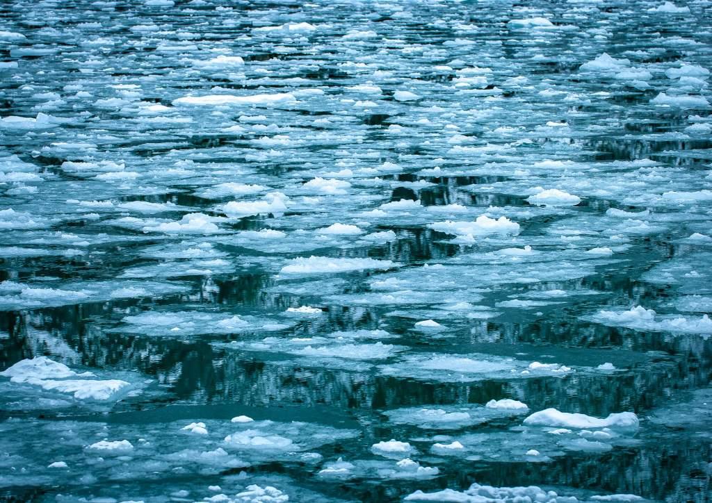 Beagle Channel Seno Pia Brash Ice