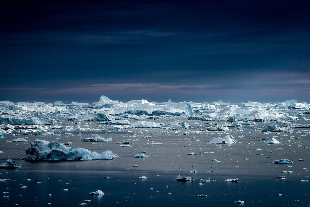 Icebergs Nansen Fjord Blog