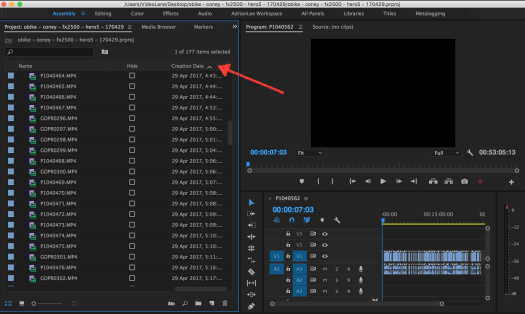 Sort Bin by Creation Date in Premiere Pro 4.png