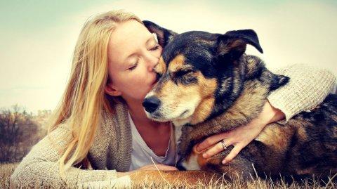 El perro es el animal preferido de los porteños