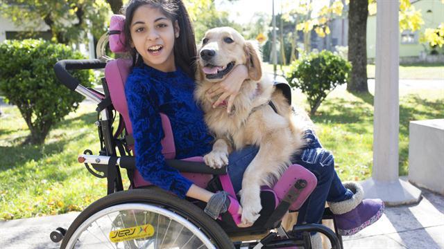 Animales que ayudan: cada vez más caballos y perros son usados en terapias