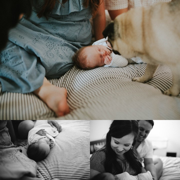 Adri de la cruz chicago and west suburbs best newborn photographer (13)