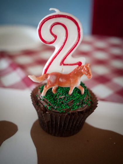 cowboy birthday party cupcake for a two year old