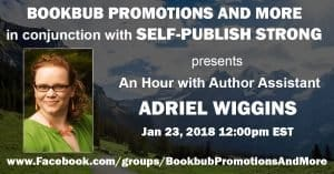 BookBub Promotions and More