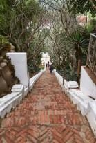 328 steps up Mt. Phousi