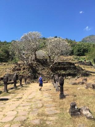 Wat Phu 2