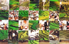VietnamCollage_0014