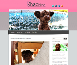 A blog updated with photos, videos, and stories featuring my Toy Poodle and Chihuahua mixed dog, Rhea.