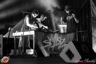 Photo 2014 Reggae Sun Ska RSS Bordeaux Symbiz Photographe Adrien SANCHEZ INFANTE (8)