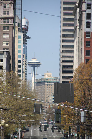 A Space Needle