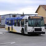 TriMet bus in Beabverton