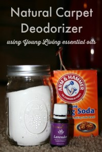 Best Carpet Deodorizer - Carpet Vidalondon