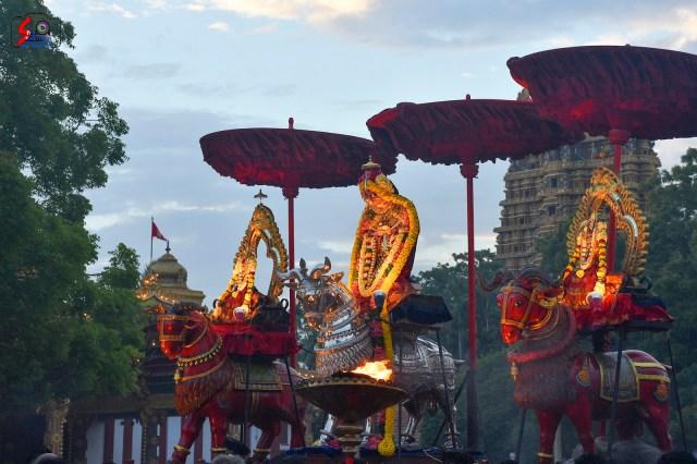 நல்லூர் கந்தசுவாமி ஆலய 15 ம் நாள் உற்சவம் 6