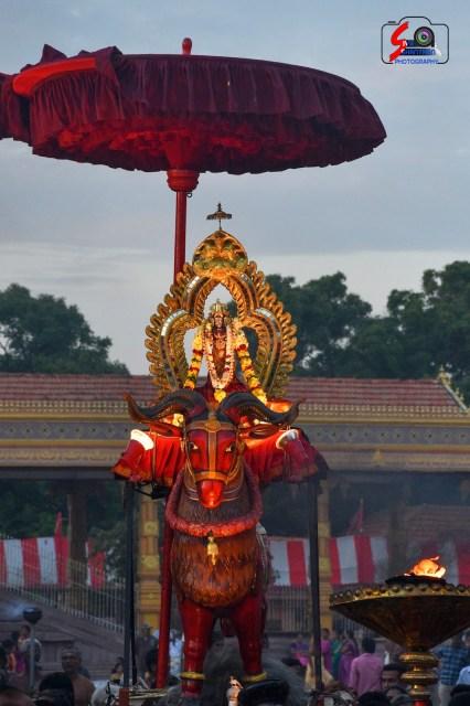 நல்லூர் கந்தசுவாமி ஆலய 15 ம் நாள் உற்சவம் 10