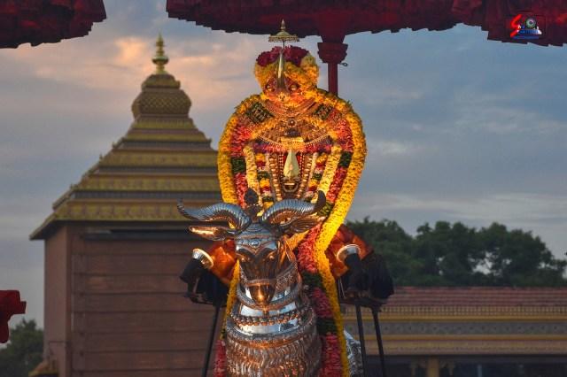 நல்லூர் கந்தசுவாமி ஆலய 15 ம் நாள் உற்சவம் 11