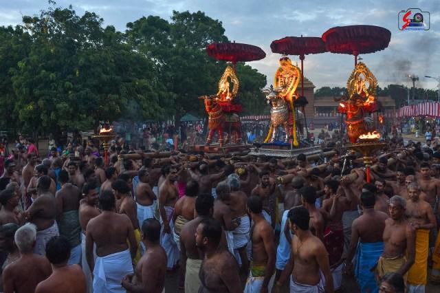 நல்லூர் கந்தசுவாமி ஆலய 15 ம் நாள் உற்சவம் 12