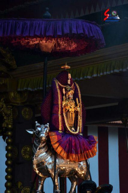 நல்லூர் கந்தசுவாமி கோவில் கந்தசஷ்டி உற்சவம் – 3ம் நாள் 3