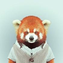 Fashion-Zoo-Animals22