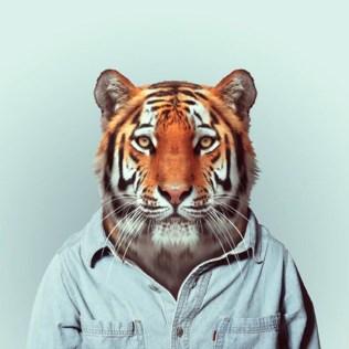 Fashion-Zoo-Animals8