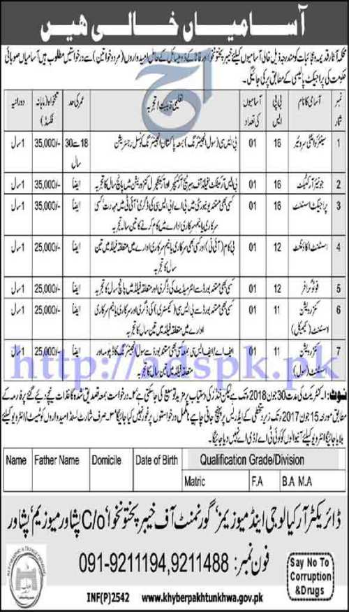 Jobs Department of Archaeology and Museums Peshawar KPK FATA Jobs 2017 for BPS-11 to BPS-16 Jobs Application Deadline 15-06-2017 Apply Now