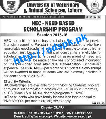 Latest HEC UVAS Need Based Scholarship Program 2015-16 Eligibility Criteria for DVM D-Pharm all BS (Hons) & all M.Sc (Morning Students Only) Apply Now by Daily Jang