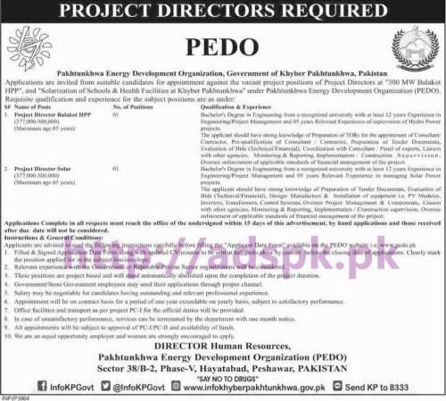 New Career Excellent Jobs Pakhtunkhwa Energy Development Organization PEDO Peshawar KPK Jobs for Project Director Balakot HPP and Project Director Solar Application Deadline 15-03-2017 Apply Now