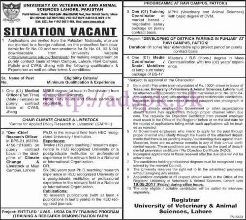 New Jobs UVAS Lahore Jobs 2017 for Medical Officer Chief Research Officer Training Coordinator Media Coordinator Jobs Application Deadline 19-05-2017 Apply Now