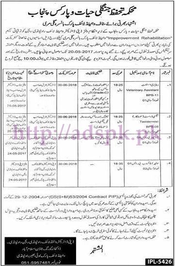 New Jobs Wildlife & Parks Govt. of Punjab Department Murree Jobs 2017 for Veterinary Assistant Taxidermist Driver Jobs Application Deadline 20-05-2017 Apply Now