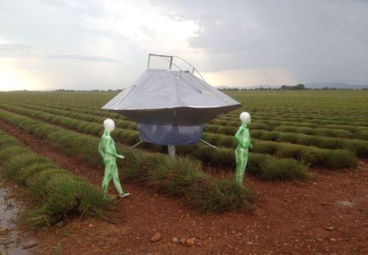 E.T. à Valensole
