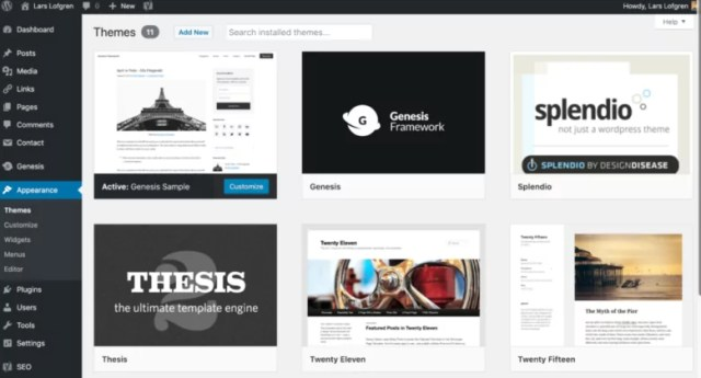 WordPress Themes section overview