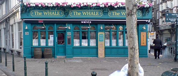 thewhale.jpg