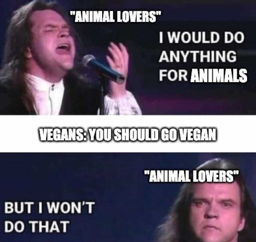 funny animal lover memes