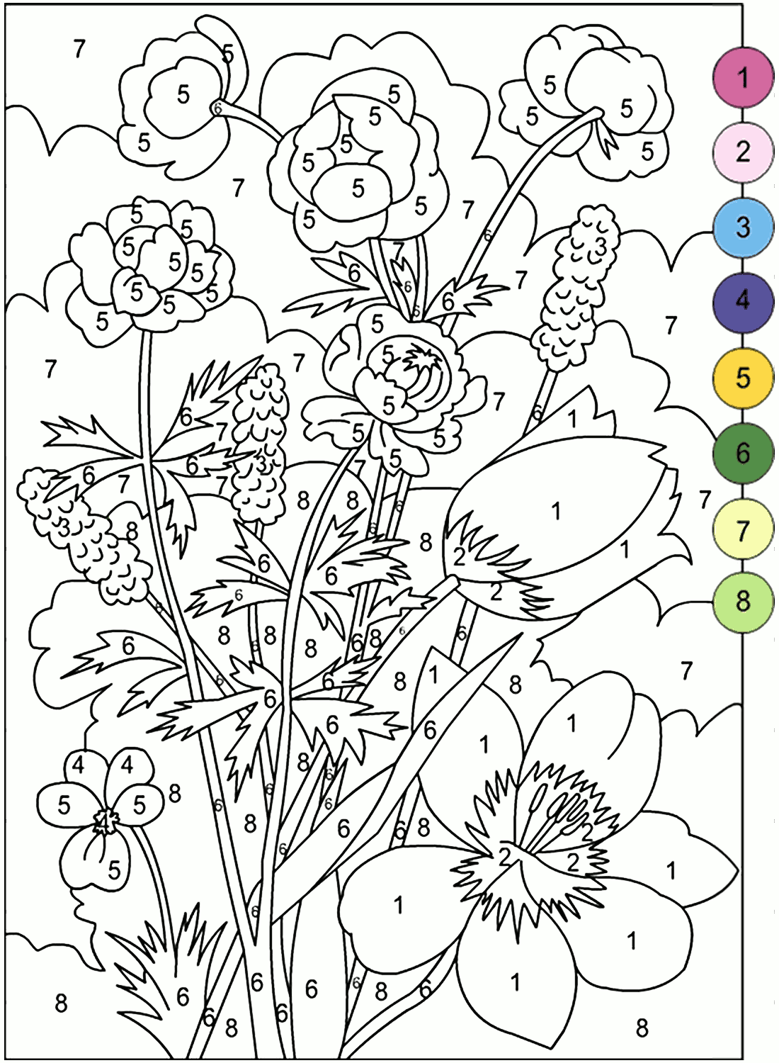 Adult Color By Number Books