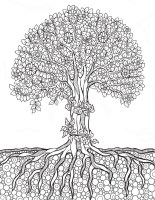 Trees Coloring Books   AdultcoloringbookZ