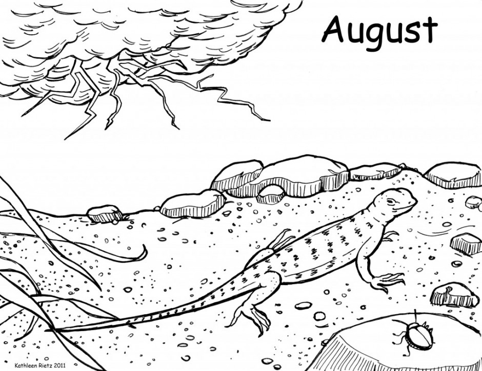 Hurricane Katrina Pages Coloring Pages