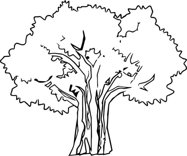 family tree coloring page # 43