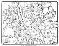 Alfons Mucha Art Nouveau Free Adult Coloring Pages  Adult ...