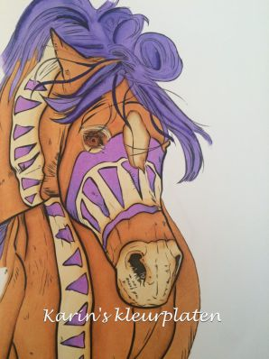 Colorist Karin Kamp colors and adult coloring book review of The Amazing World of Horses by Cindy Elsharouni