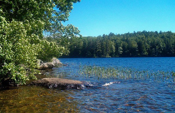 Denise's grandmother's lake in an undisclosed location in mid coast Maine