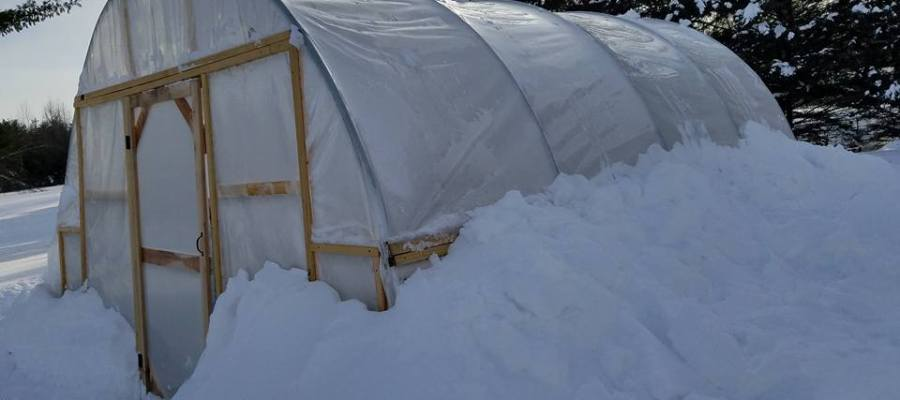 Denise's greenhouse in snow in New Hampshire