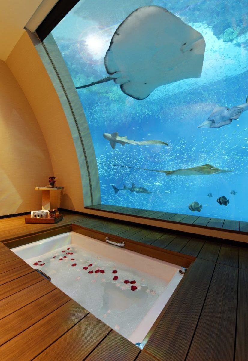 Aquarium Hotel with Bath