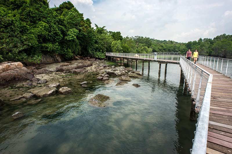 Palau Ubin Island Photo