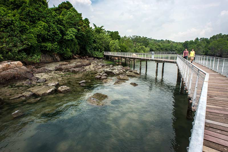 Palau Ubin Island Photo