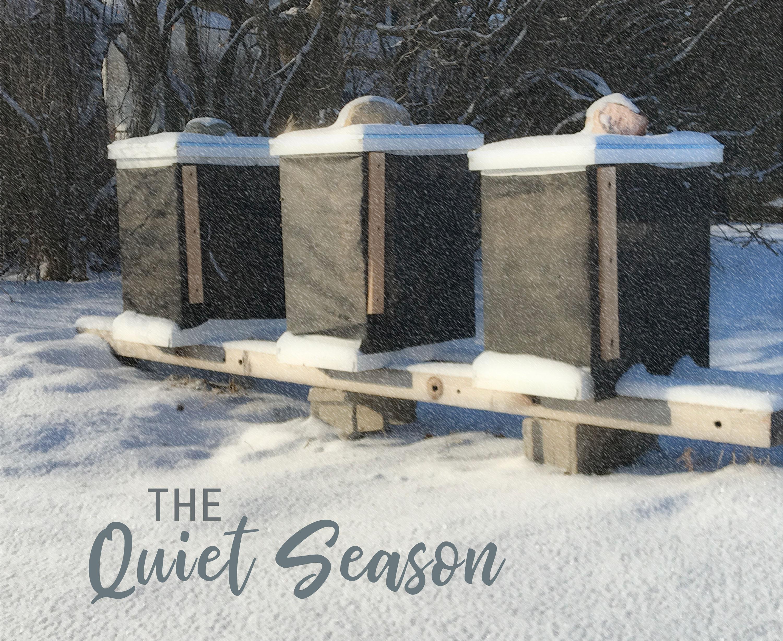 Wisconsin beehives in winter