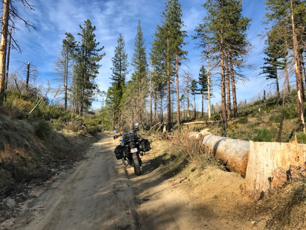 Adventure Bike in the Angeles National Forest