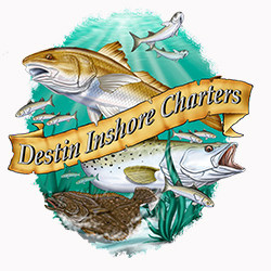 web design, seo and marketing testimonial from destin inshore charters