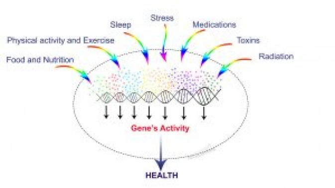 genes, DNA, epigenetic and health problems
