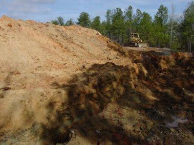 Talbot Environmental Project DSC06571
