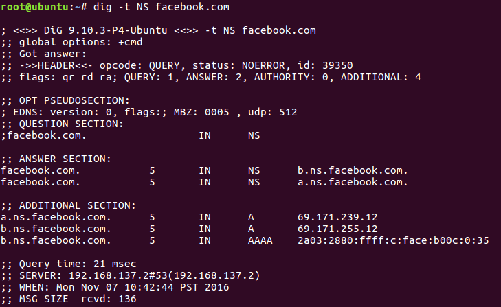 This is the output of running dig on Facebook.com